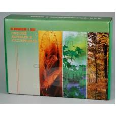 Гербарий Деревья и кустарники (20 видов) формат А-3