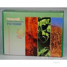 Гербарий Кормовые растения (20 видов) формат А-3
